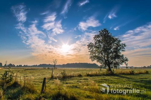 Nadnarwiańskie łąki o wchodzie słońca, Łomżyński Park Krajobrazowy Doliny Narwi