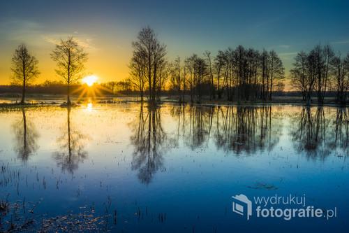 Wiosenny wschód słońca nad rozlewiskami Narwi