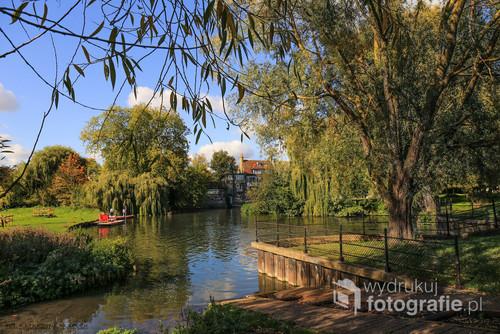 Łodzie płynące po rzece w parku w Cambridge.