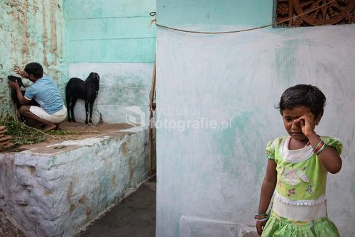Dziewczynka niepokoi się losem kozy. Badami, Indie. 22.08.2015.