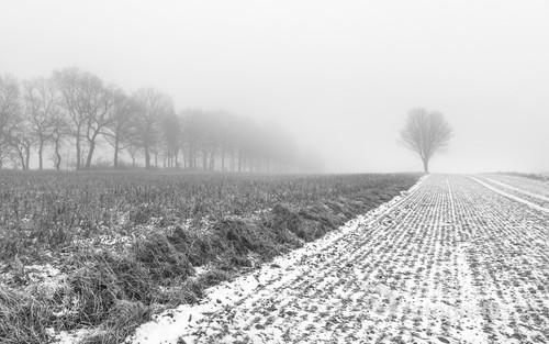 W takie dni jak ten, w którym zrobiłam to zdjęcie, nie chce się wychodzić z domu. Zaręczam, że warto! Jest cicho, pusto, klimatycznie a mgła powoduje, że miejsca znane i często odwiedzane wyglądają zupełnie inaczej niż na co dzień.