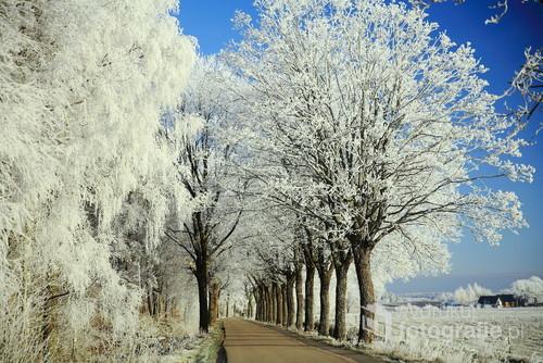 Zdjęcie zrobiłem na drodze z m.Jasień do m.Mydlita  gm.Czarna Dąbrówka  20.12.2017 o 9 rano,lekki mróz i piękne oszronione drzewa
