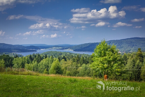 Bieszczady Mountains, Poland. Solina Lake. View of the lagoon from the hill in Werlas.