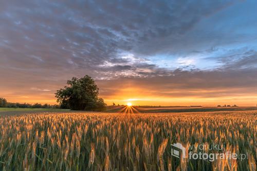 Zachodzące wakacyjne słońce złapane w chwili chowania się za horyzontem.