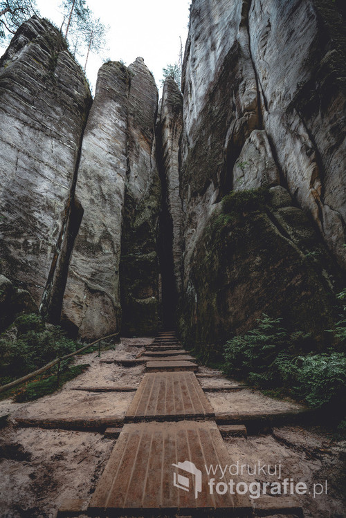 Fragment szlaku z Adrspaskich skał