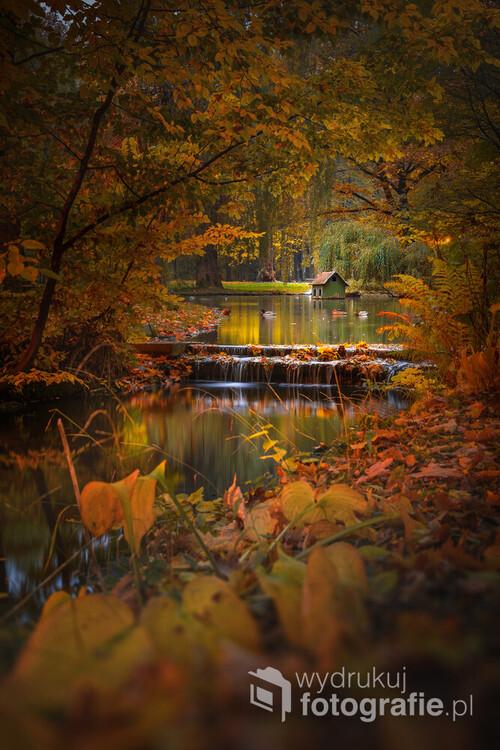 Zdjęcie zostało wykonane jesienią w parku w Żywcu. Jest to jedno z piękniejszych miejsc gdzie można udać się na spacer o tej porze roku.