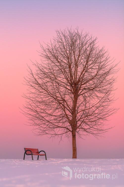 Zdjęcie zostało wykonane na Wzgórzu Trzy Lipki w Bielsku-Białej tuż po zachodzie słońca. Minimalistyczna forma sprawia, że patrząc na ten obraz od razu można się zrelaksować.