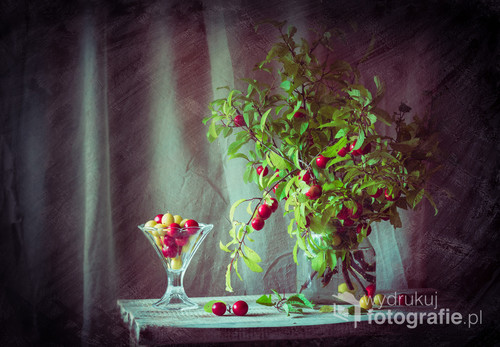 49/5000