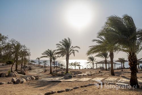 Listopadowy krajobraz Akaby na piaszczystej plaży pełnej palm.