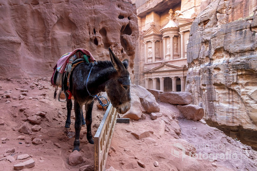 Ruiny miasta Nabatejczyków, czyli jednego z 7 nowych cudów świata, w listopadzie 2017