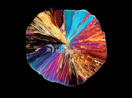 Seria zdjęć przedstawiających kwas cytrynowy w początkowej fazie krystalizacji.   Zdjęcie zostało wykonane przez mikroskop w świetle spolaryzowanym, powiększenie 20x.  Początek pracy nad tego typu fotografiami oznacza krystalizowanie setek próbek i przeglądanie ich w poszukiwaniu inspirujących fragmentów.