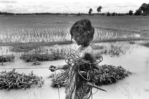 Południe Kambodźy, 2010.